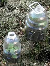 Do It Yourself Cloches