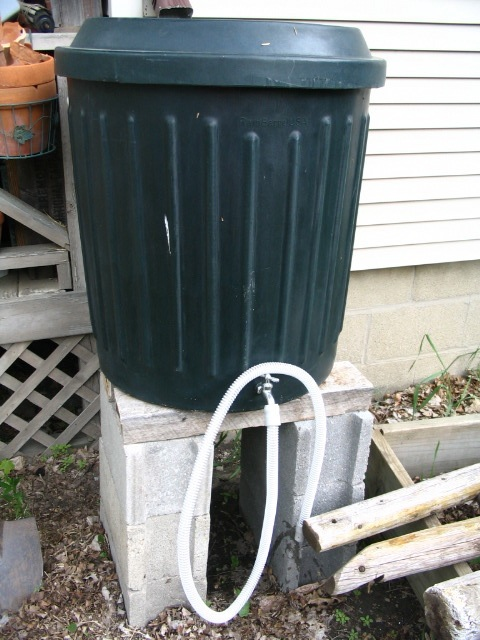 but I'm nonetheless happy to see the $1.79 rain barrel credit on my quarterly water bill.