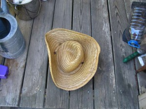 Broken Straw Hat