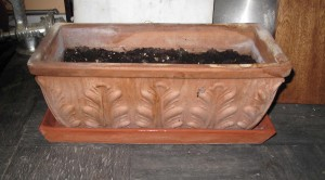 Terra cotta tray with planter