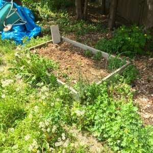 "The ""Sandbox"" bed and a bit of gravel path ""au naturel"""