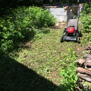 After 20 minutes with a mower and a bit of hand weeding, the rustic contours of this area emerged.