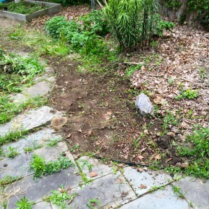"The gravel path entrance after ""20-ish"" minutes of weeding."